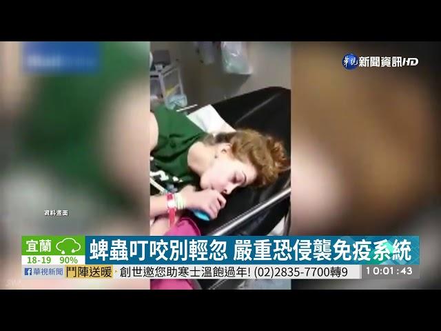 跨境感染? 7旬翁登山遭蜱蟲咬命危| 華視新聞 20191120