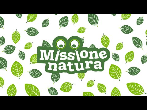 Sensory Trust Missione natura