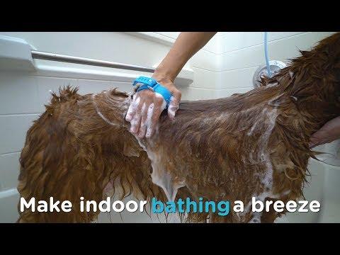 Using the Aquapaw® Pet Bathing Tool Indoors