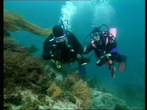 PADI Advanced Open Water Diver Course PT-Br (2/3)