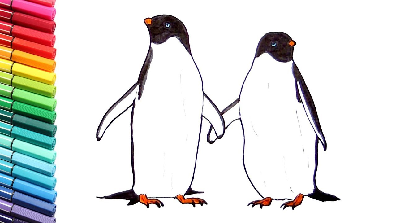 drawing and coloring penguin learning animals names and sound