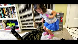 TODDLER VS CAT(Day 326)*2015-7-23*