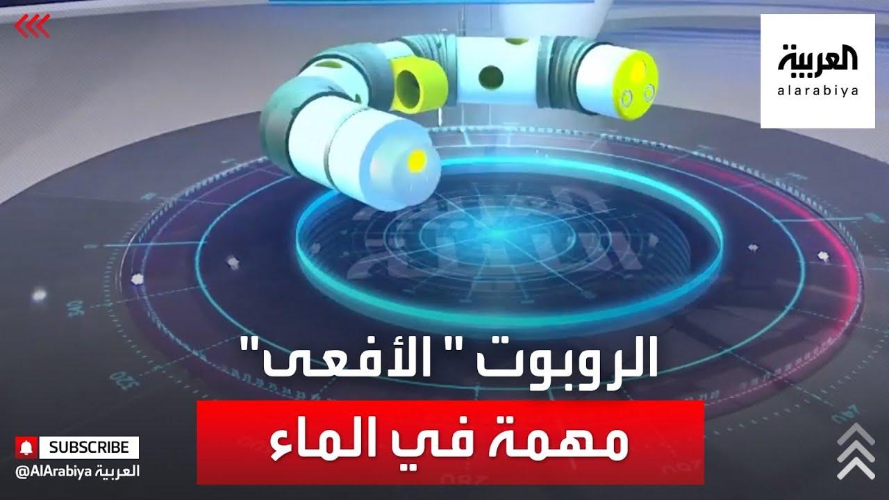 روبوت يقوم بصيانة خطوط النفط بأعماق البحار  - نشر قبل 3 ساعة