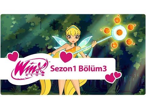 Winx Club - Sezon 1 Bölüm 3 - Alfea'da Dersler Başlıyor