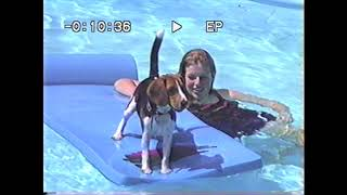 Becky swimming with Bonnie and outside house views at 338 Oakwood Ave Aug 1993