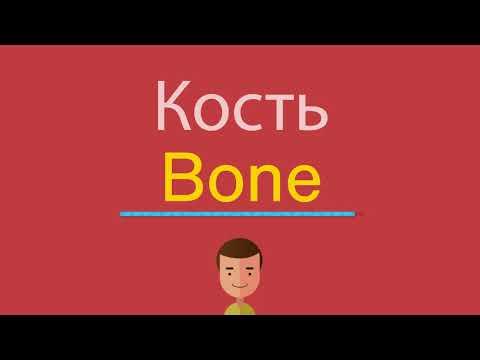 Как по английски кость