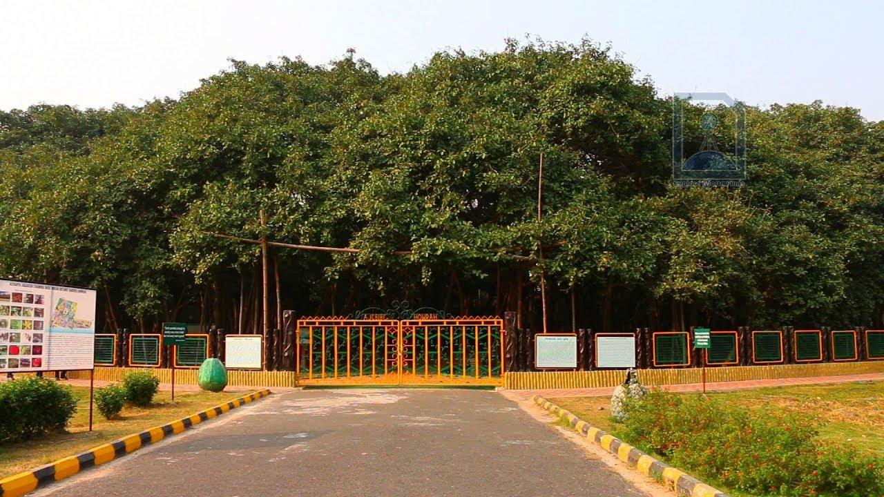 The Great Banyan Tree Over 250 Year Old Tree In Howrah Near Kolkata Youtube