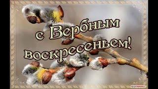 Поздравляю вас с Вербным воскресением От всего сердца желаю