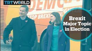 UK General Election: Liberal Democrats campaigning on remain manifesto