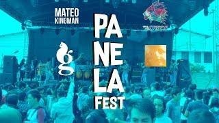 Resumen Panela Fest 2017