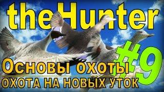 the Hunter - Охота на уток [Основы охоты] #9