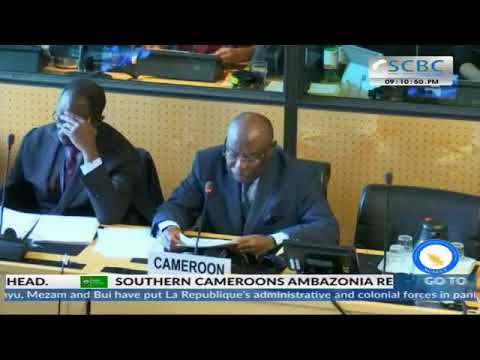 Session Committee Against Torture - Consideration of Cameroon - 1574th Meeting