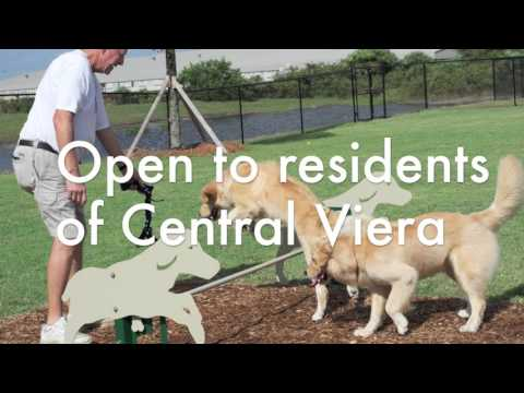 Addison Village Bark Park Grand Opening