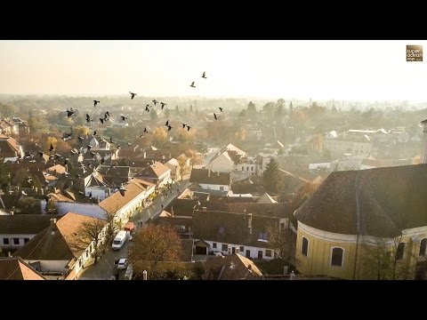 Trafalgar Travel - Optional Experiences - Szentendre, Hungary
