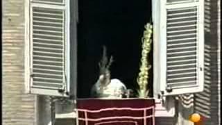 Reportaje sobre la muerte y sucesión de Juan Pablo (2005).