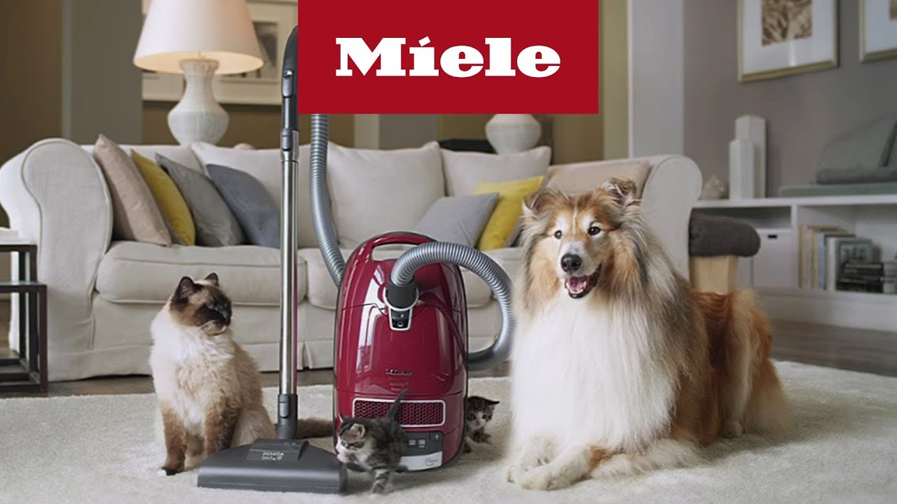 Miele Cat And Dog Si