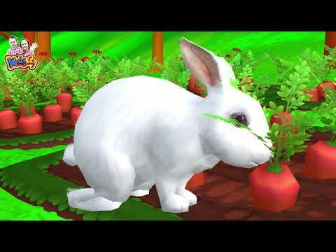 เพลงกระต่ายขาว | เพลงเด็กพี่นุ่น น้องภูมิ By KidsMeSong