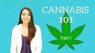 Cannabis 101: Part One!