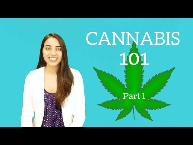 Cannabis 101: Part One!