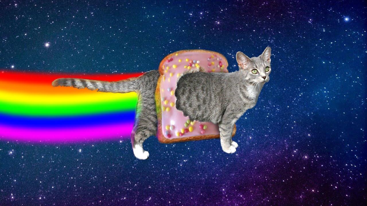 Nyan Cat Without Nyan Cat