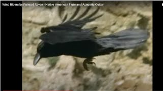 Wind Riders by Painted Raven - Native American Flute and Acoustic Guitar