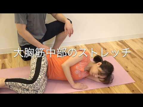 13大胸筋中部のストレッチ