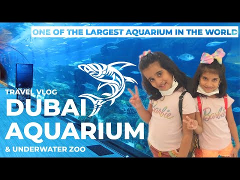 Dubai Mall Aquarium and Underwater Zoo | Sadhvi & Sahasvi | Travel Vlog