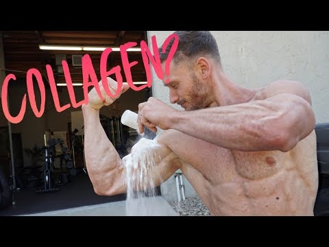 muscle-growth:-collagen-vs.-other-proteins--study-results-|-thomas-delauer