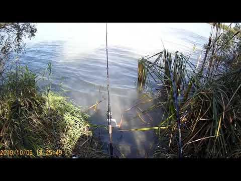 Рыбалка на реке протока краснодарского края