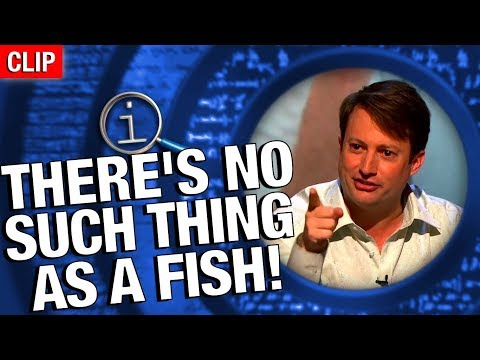 QI | No Such Thing As A Fish