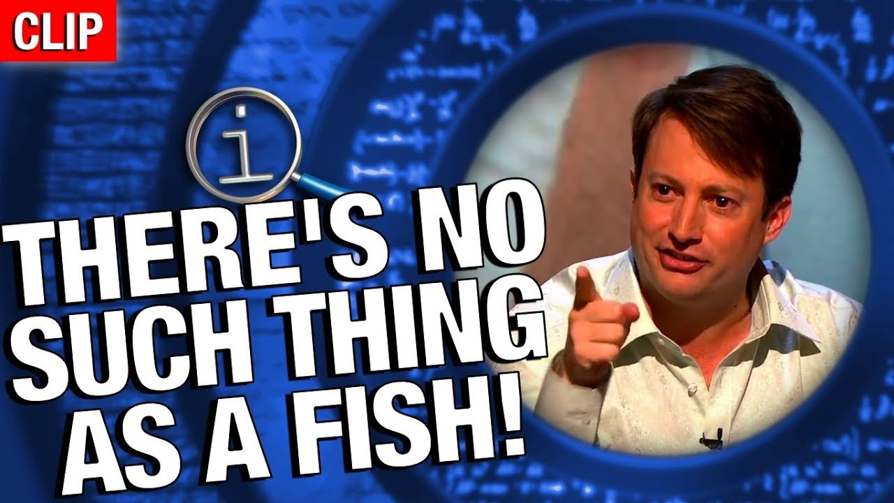 Qi no such thing as a fish youtube for No such thing as a fish