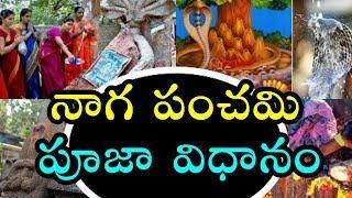 Naga panchami pooja vidhanam in telugu | Nagula chavithi puja, naivedyam Telugu 2018 Shudda Panchami
