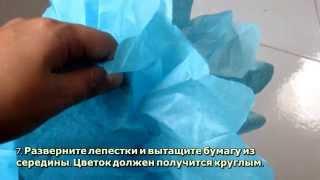 Цветы из бумаги тишью  - DIY Рукоделие - Guidecentral