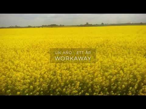 A year as a Workaway
