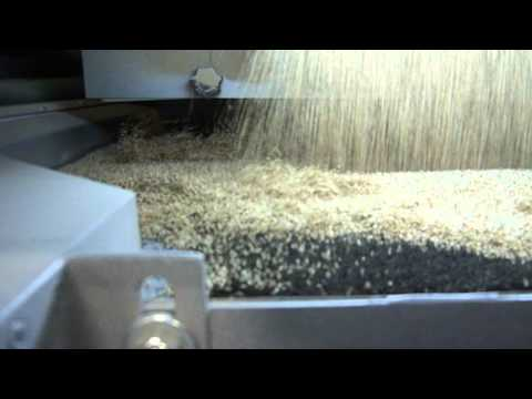 Akyurek Technology - Sesame Seed Cleaning Plant in Michigan USA