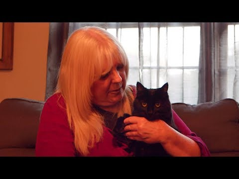 Woman Says Friend Puts Her Cats Above Everything Else In Life