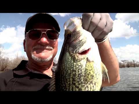 Sac A Lait Fishing HOT Tips Greg Hackney - Sportsman TV