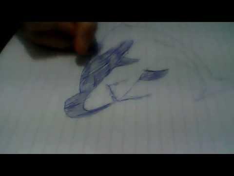 Disegno di uno squalo youtube for Disegno squalo