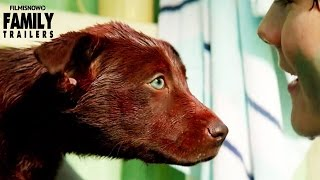 RED DOG: True Blue | Official Trailer - Family Movie [HD]