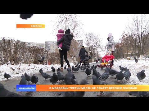 В Мордовии третий месяц не платят детские пособия