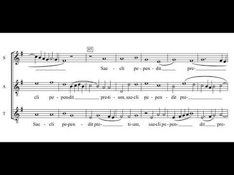 Palestrina: Vexilla regis - Musica Contexta