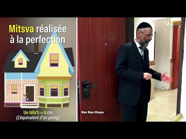 🔍⚙️TUTORAH🤓✡️ spécial Hanouka ! 🔥✡️ épisode 1 - Réaliser la Mitsva à la perfection