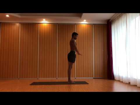 Astanga yoga intermediate series or second series with sri yoga mysore