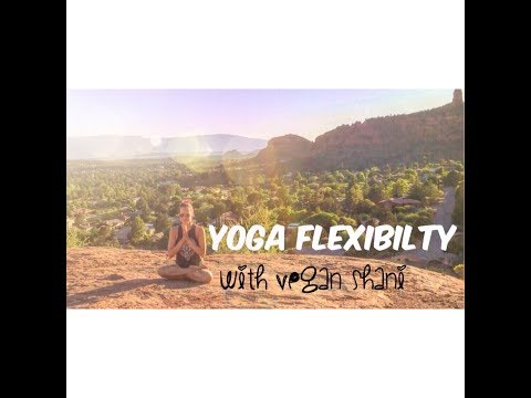 Yoga Flexibility : 25 minutes with vegan shani