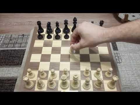 Шахматы. Самый быстрый мат.