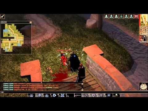 Neverwinter Nights Playthrough Part 20: South Road