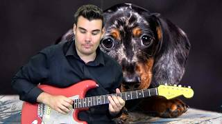Puppy Love - Donny Osmond - Guitar Cover