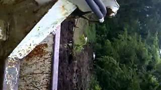 melroe bobcat 70s moving manure