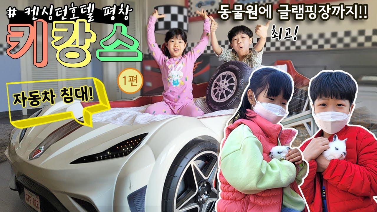 자동차가 침대로 변신!! 동물원이 있는 신기한 호텔 체험 놀이 가족 여행 브이로그 강원도 평창 1편 [Korea Tour] Pyeongchang, Gangwon-do
