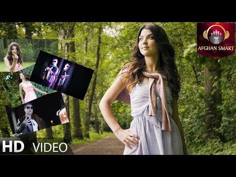 Sebrat Sahab - Yaar e Jaani OFFICIAL VIDEO